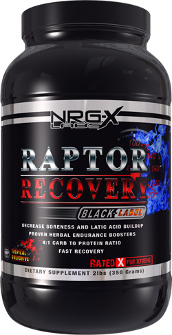 Raptor Recovery Black Label Fruit Punch